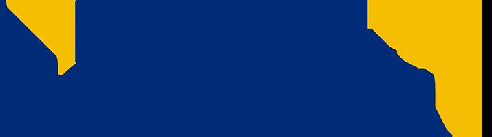 00226_01_logo-nge-connect-rvb200